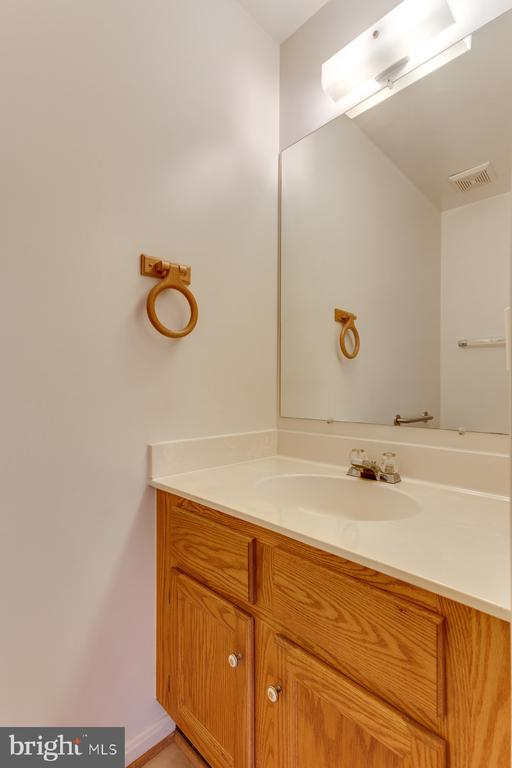 Powder Room - 12036 SUGARLAND VALLEY DR, HERNDON