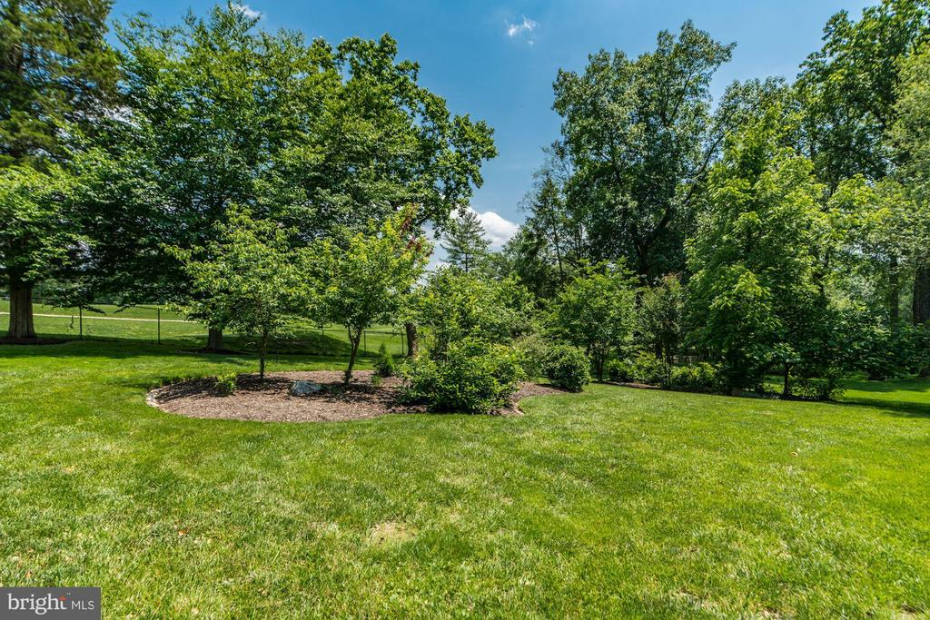 Delightful Rear Yard backing to the Bethesda Count - 9927 CARTER RD, BETHESDA