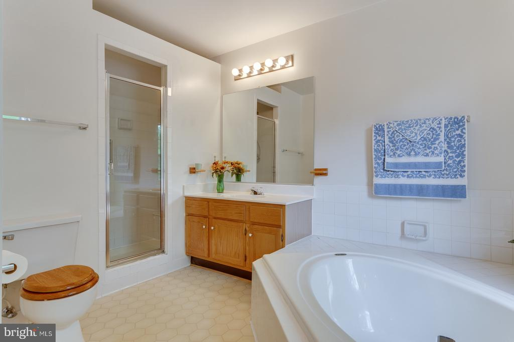 Master Bath with Soaker, Separate Shower & Sinks - 12036 SUGARLAND VALLEY DR, HERNDON