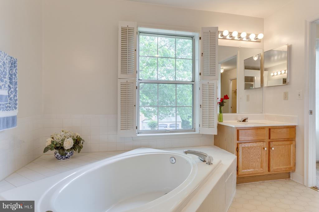 Master Bath Soaker, Separate Shower and Sinks. - 12036 SUGARLAND VALLEY DR, HERNDON
