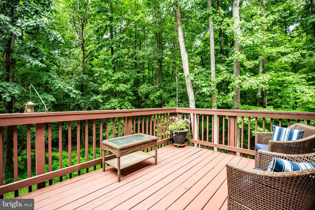 back deck - 7340 JEFFERSON DR, KING GEORGE