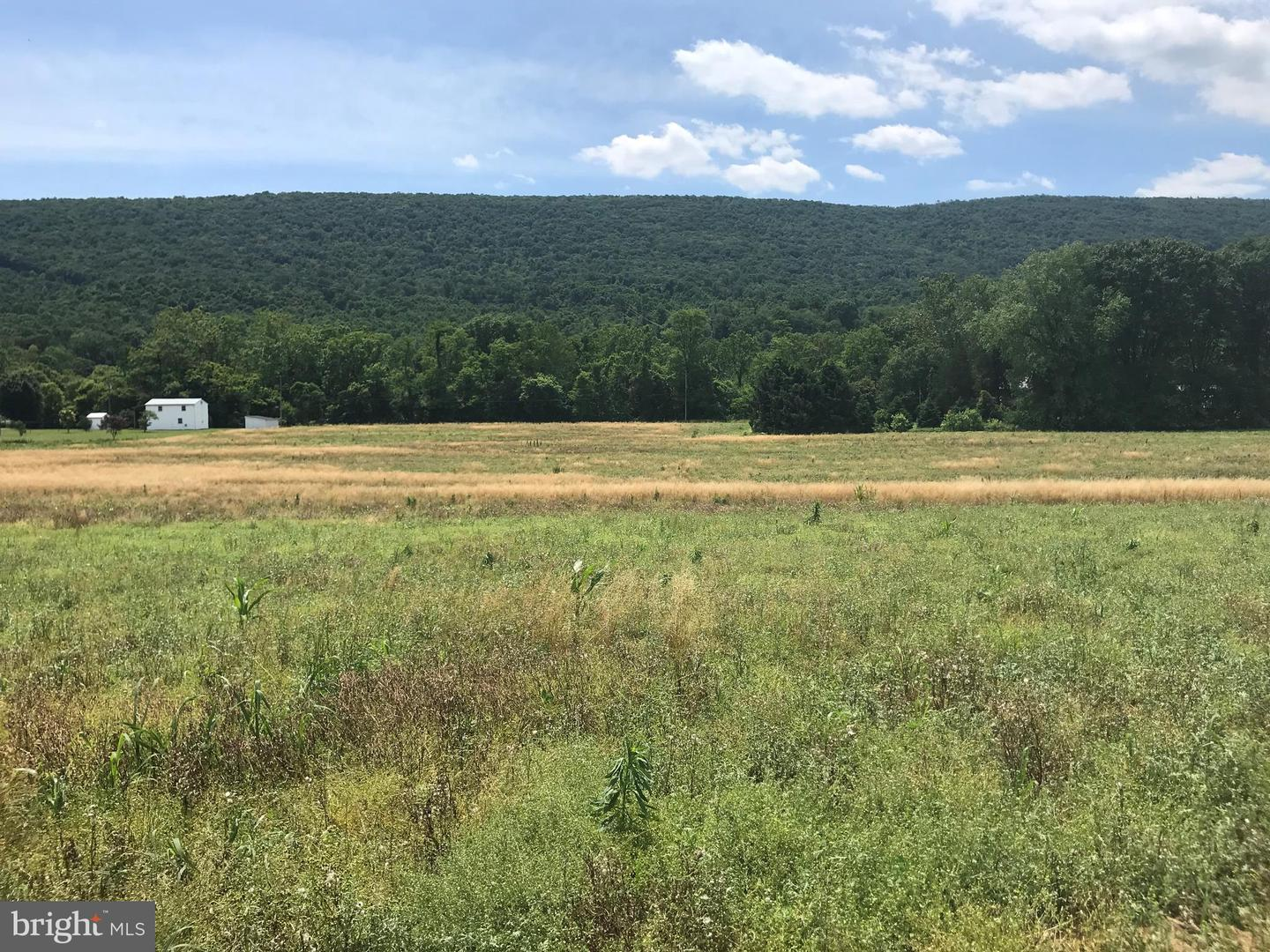 Land for Sale at Thompsontown, Pennsylvania 17094 United States