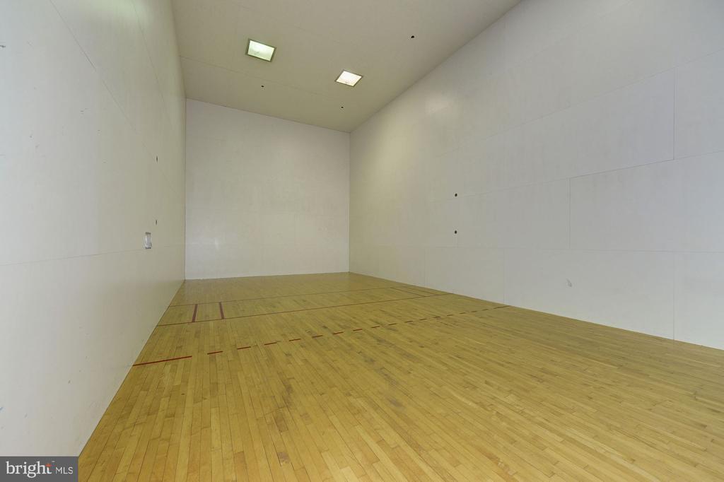 Racquetball Court & Basketball Half Court - 4404 HELMSFORD LN #203, FAIRFAX