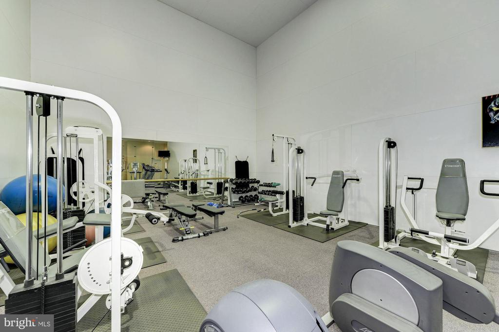 Community Fitness Center with Cardio & Weights - 4404 HELMSFORD LN #203, FAIRFAX