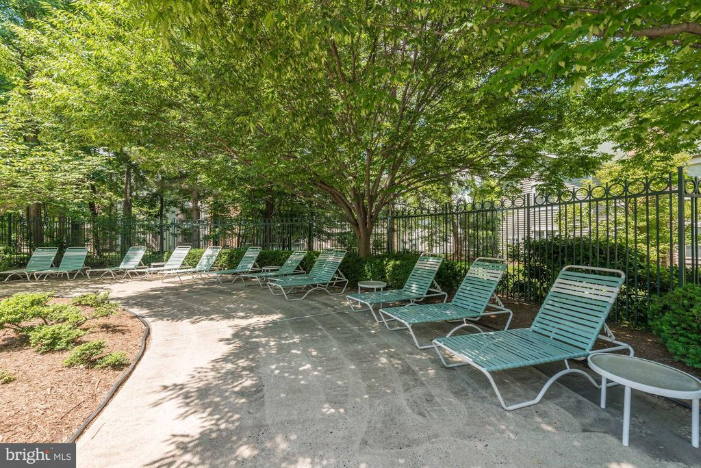 Sun Deck with PLENTY of Lounge Chairs for Everyone - 4404 HELMSFORD LN #203, FAIRFAX