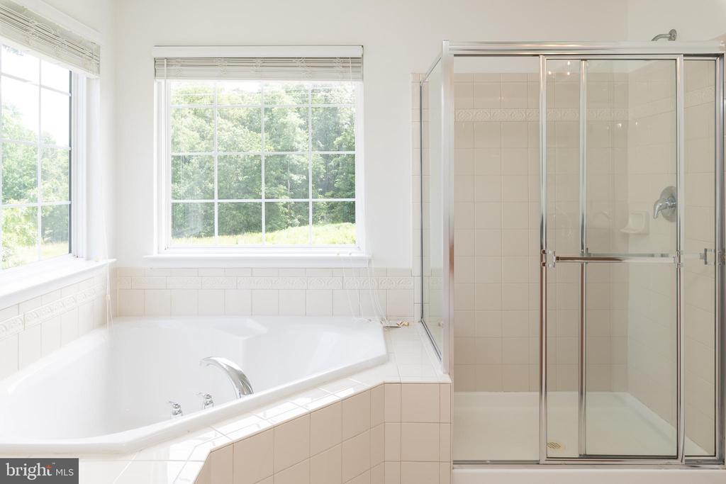 Large Soaking Tub & Walk-in Shower - 10905 HOWITZER DR, FREDERICKSBURG