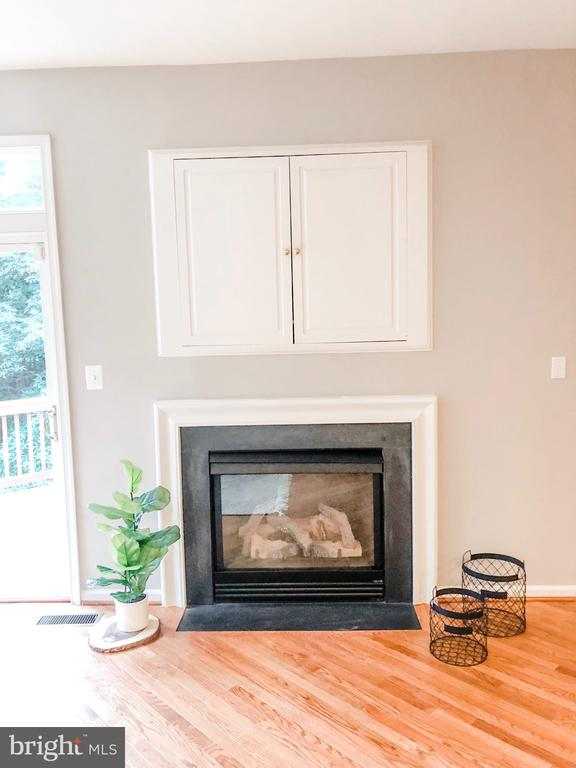 Gas Fireplace and Built-ins in FR - 43113 HUNTERS GREEN SQ, BROADLANDS