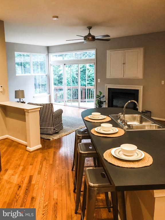 Kitchen and Family Room Combo - 43113 HUNTERS GREEN SQ, BROADLANDS