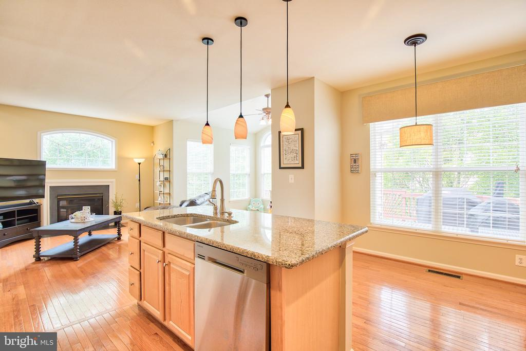 Granite countertops and stainless steel appliances - 18309 MILL RIDGE TER, LEESBURG
