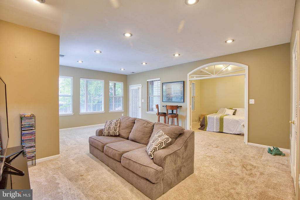 Lower Level Rec Room - 18309 MILL RIDGE TER, LEESBURG
