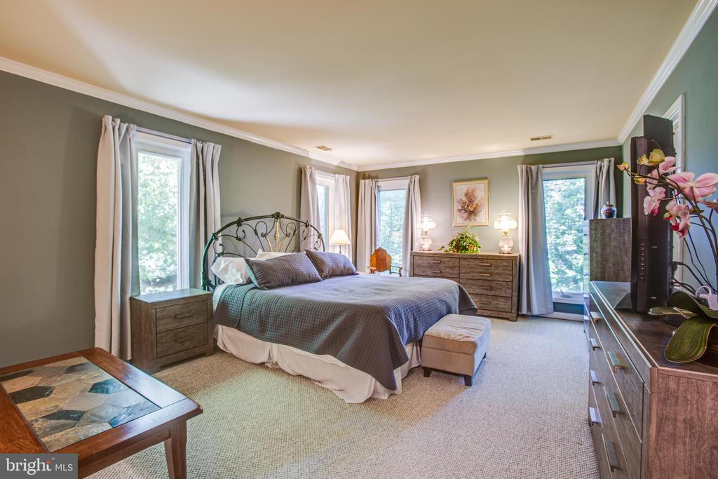 Master bedroom - 348 OAK TREE LN, STERLING
