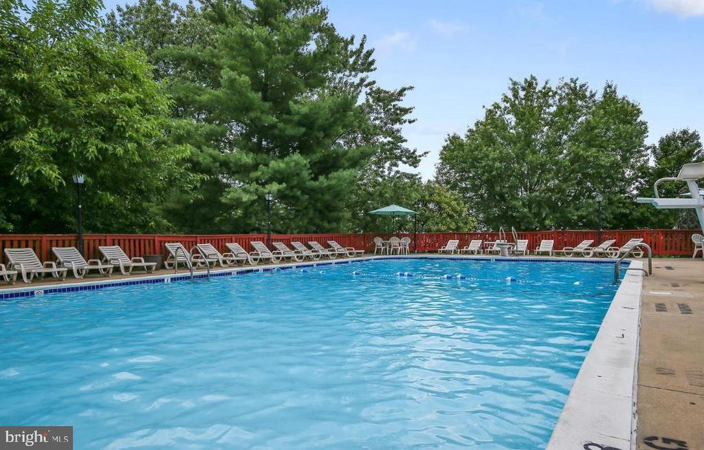 Large outdoor pool - 2817-D S WOODROW ST #124-8, ARLINGTON