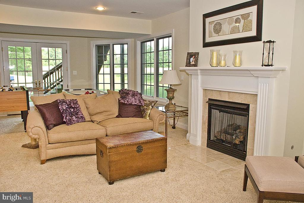 Recreation Room on W/O~level~ & 2 additional BR's. - 20280 GILESWOOD FARM LN, PURCELLVILLE