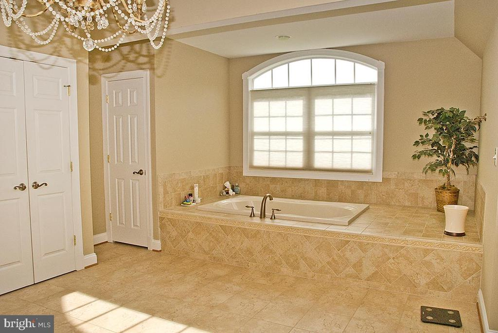 Luxurious Master Bath - 20280 GILESWOOD FARM LN, PURCELLVILLE
