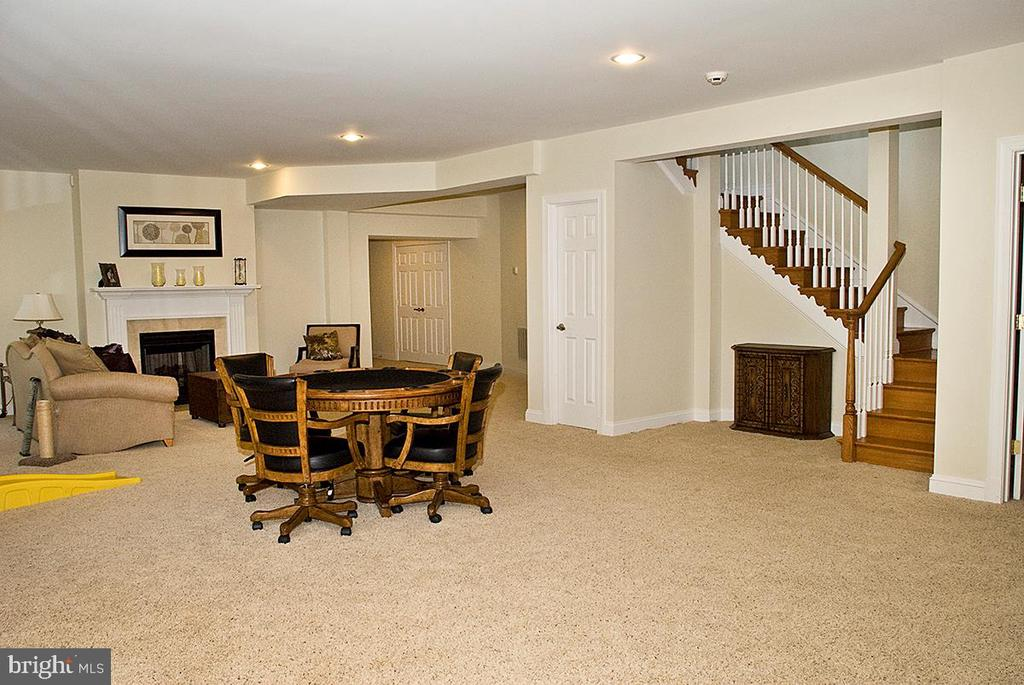Lower Walk out~Level~/ full bath & Exercise Room - 20280 GILESWOOD FARM LN, PURCELLVILLE