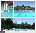 Three Amazing Pools - 43113 HUNTERS GREEN SQ, BROADLANDS