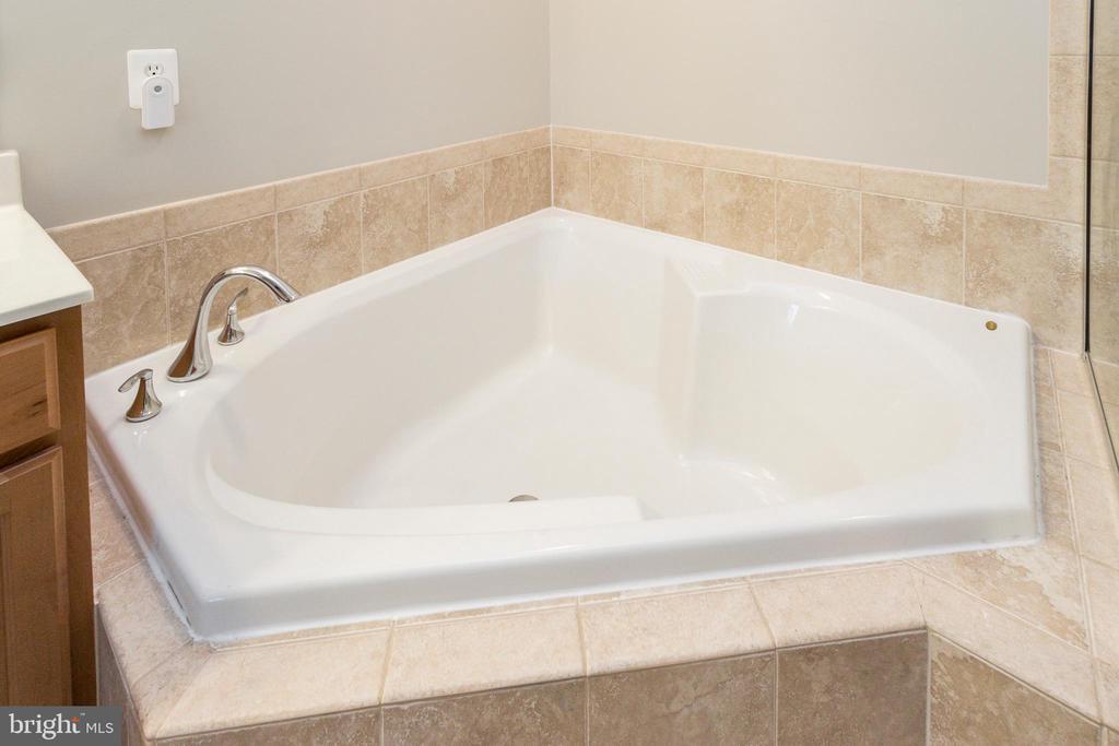 Master Bath Soaking Tub - 19229 WINMEADE DR, LEESBURG