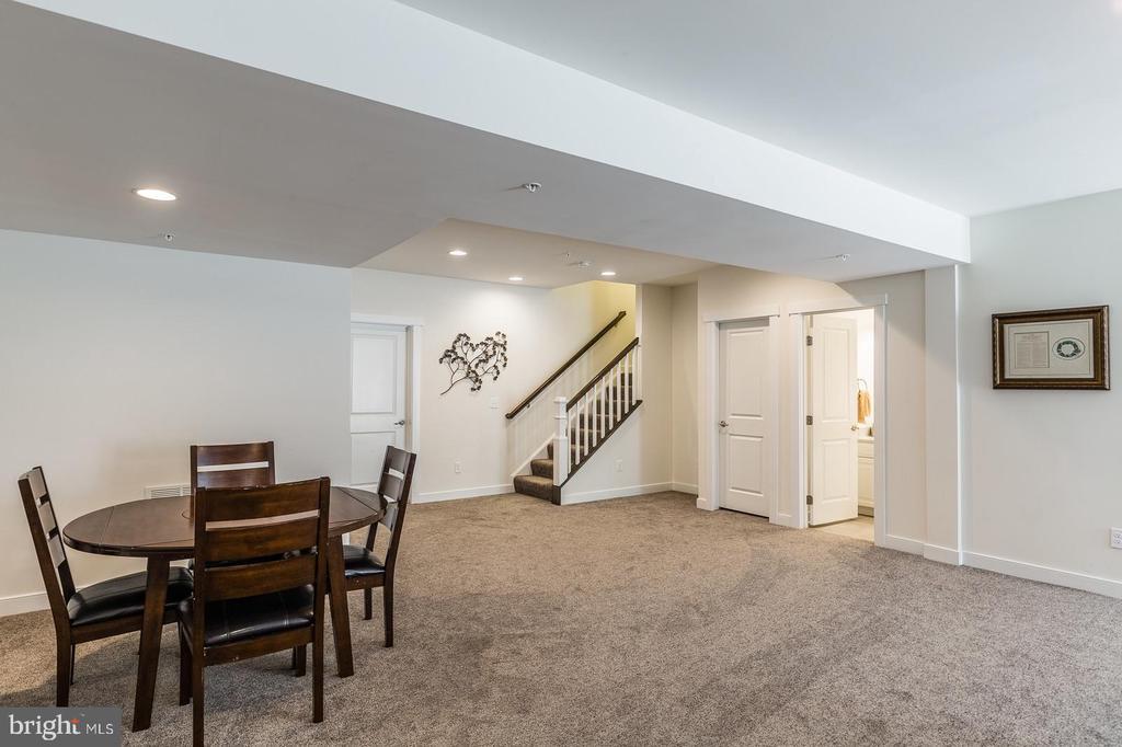 Finished walkout basement - 17152 GULLWING DR, DUMFRIES