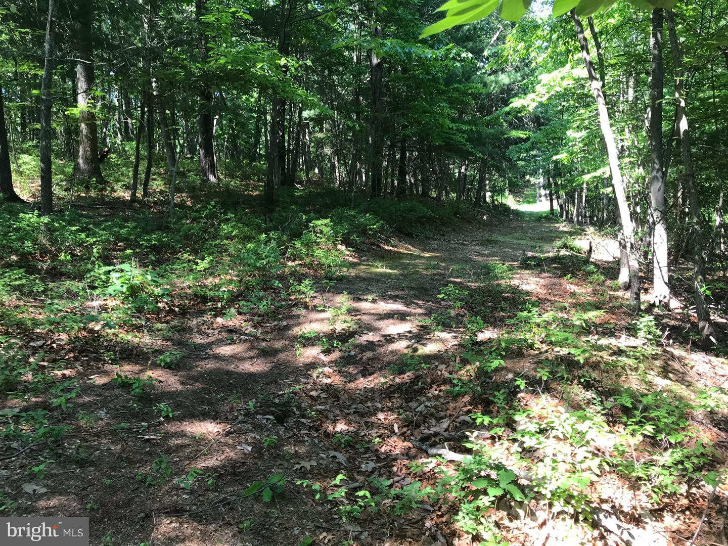 Land for Sale at Markham Farm Front Royal, Virginia 22630 United States