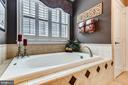 Master Bath - 18192 SHINNIECOCK HILLS PL, LEESBURG