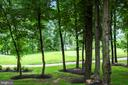View from rear Patio - 18192 SHINNIECOCK HILLS PL, LEESBURG