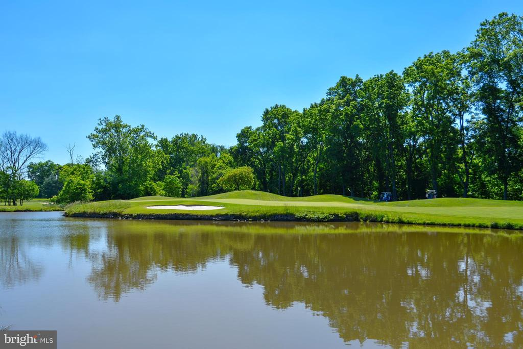 River Creek Golf Course & Potomac River - 18192 SHINNIECOCK HILLS PL, LEESBURG