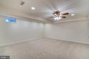Basement Rec Are - 700 WOODEN BRIDGE DR, PURCELLVILLE