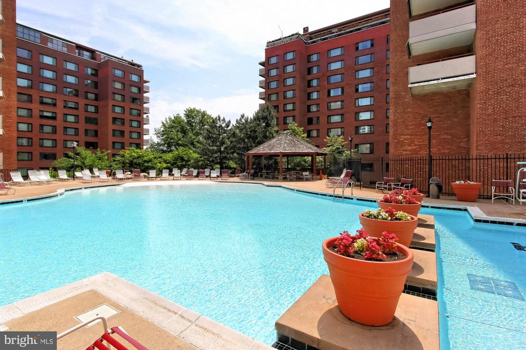 Outdoor pool - 1021 ARLINGTON BLVD #419, ARLINGTON