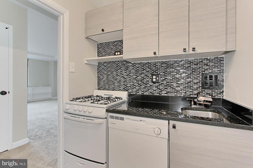 Beautifully renovated kitchen - 1021 ARLINGTON BLVD #419, ARLINGTON