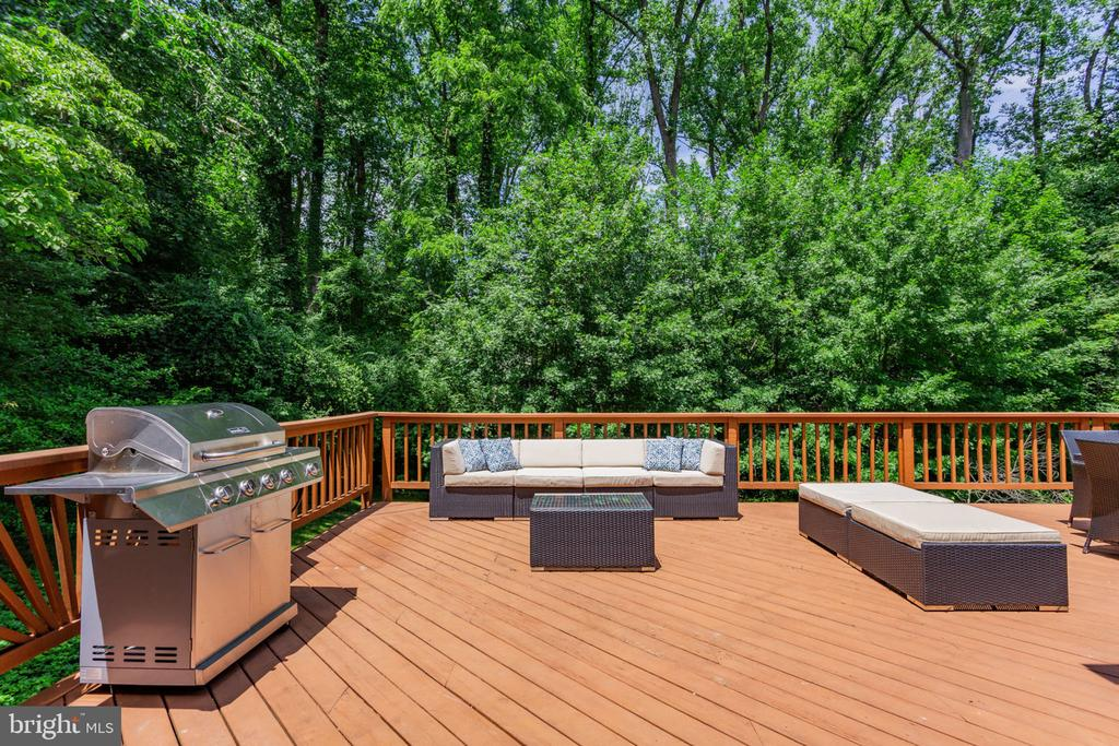 Perfect for outdoor living,  with great privacy - 1044 RECTOR LN, MCLEAN