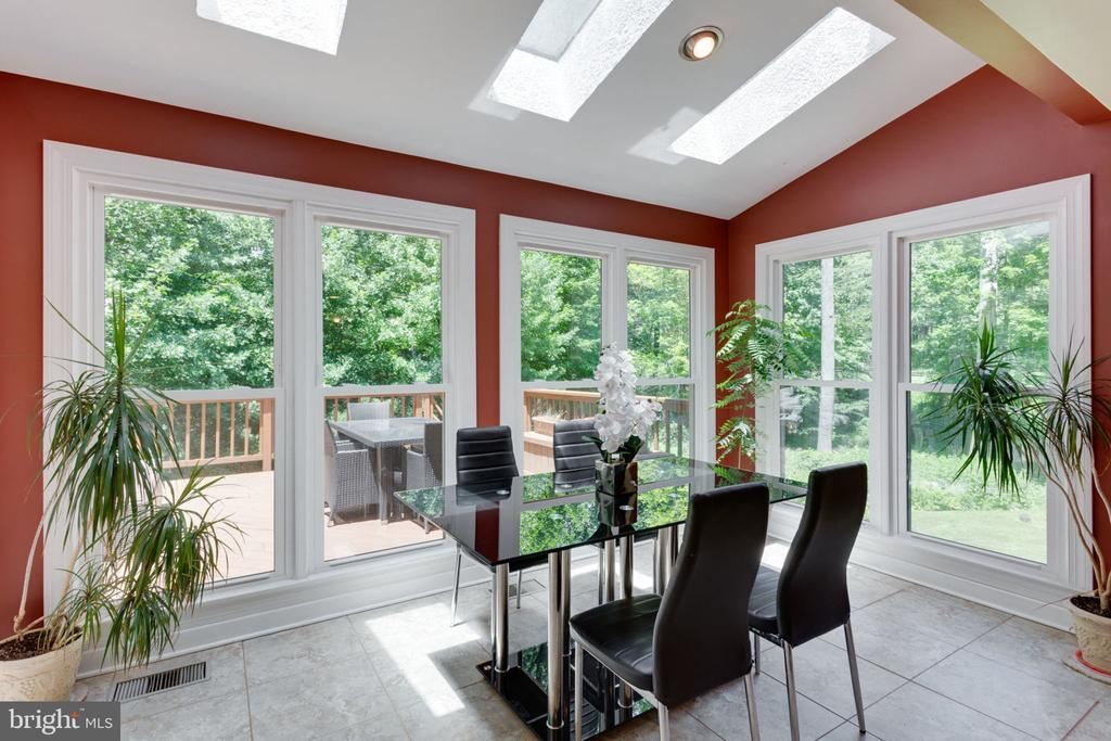 Solarium, with skylights, plants love it here - 1044 RECTOR LN, MCLEAN