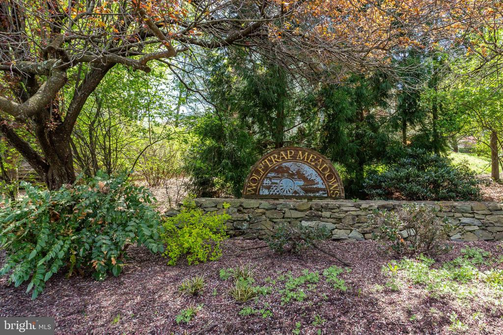 Desired community with easy commute to Tysons - 9815 WINTERCRESS CT, VIENNA