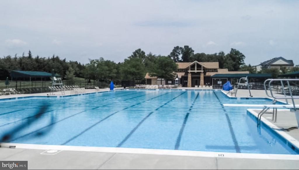 Lap Pool w/ Diving Board - 43113 HUNTERS GREEN SQ, BROADLANDS