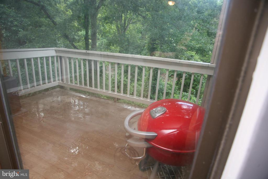Balcony with unobstructed view of trees - 5818 ROYAL RIDGE DR #Q, SPRINGFIELD