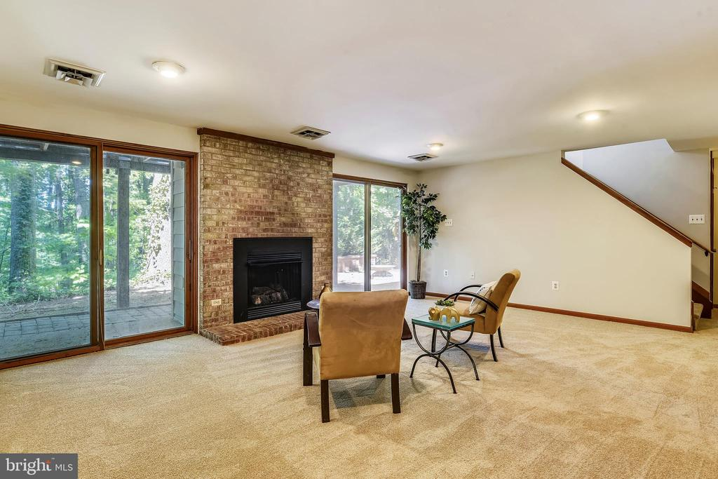Lower level rec room with walk out - 15795 FAWN PL, DUMFRIES