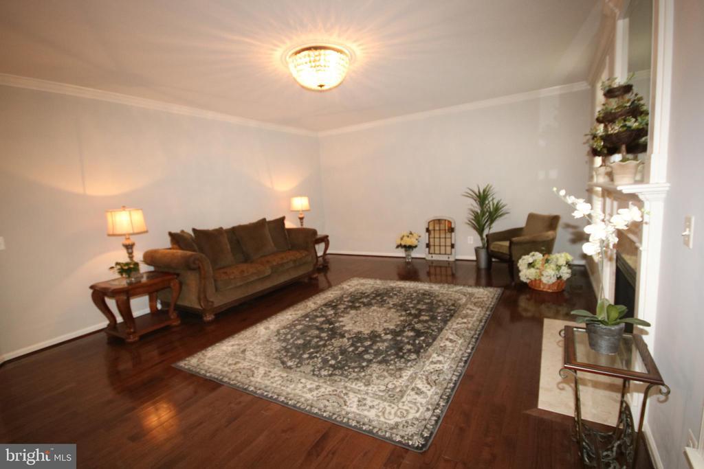 Family room has hardwood floor & gorgeous light - 47429 RIVER FALLS DR, STERLING