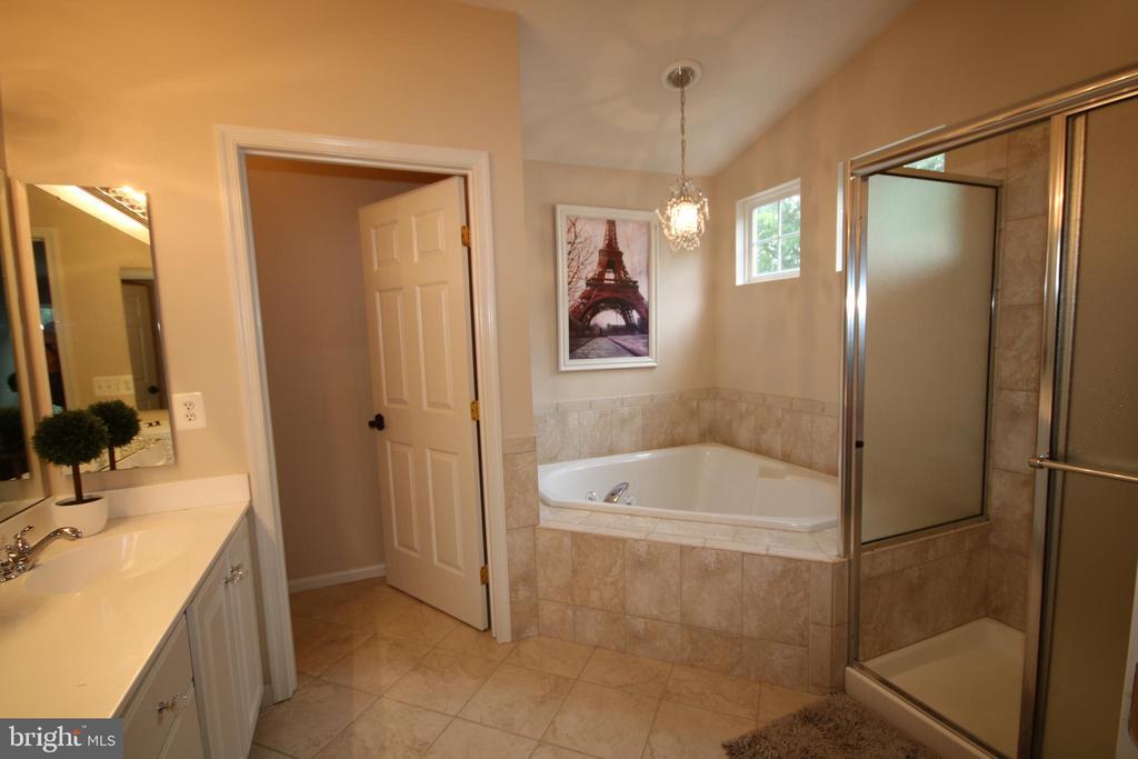 Spacious master bath w/soaking tub & shower - 47429 RIVER FALLS DR, STERLING