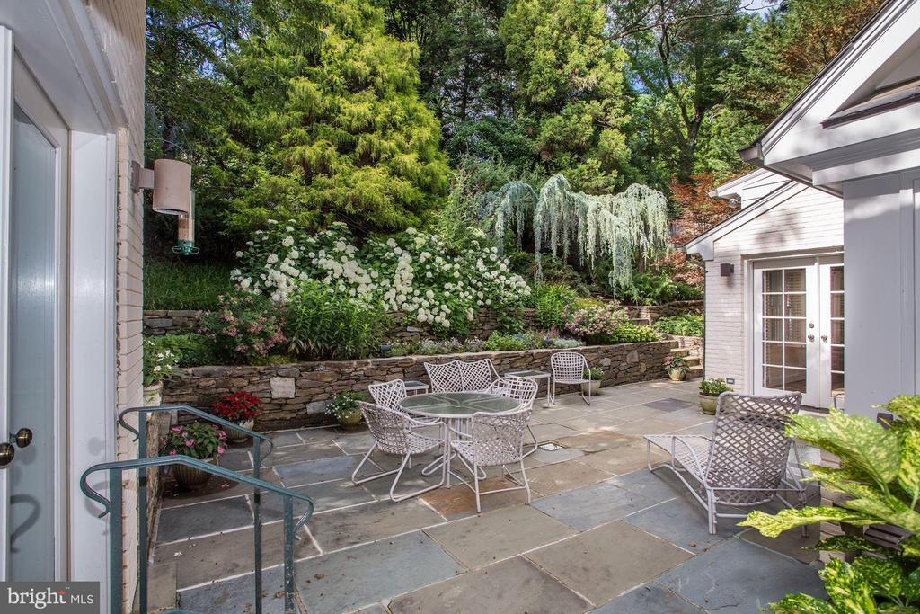 Terrace with award winning garden - 4649 GARFIELD ST NW, WASHINGTON
