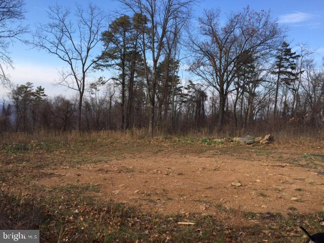 Land for Sale at 2900 Blue Mountain Front Royal, Virginia 22630 United States