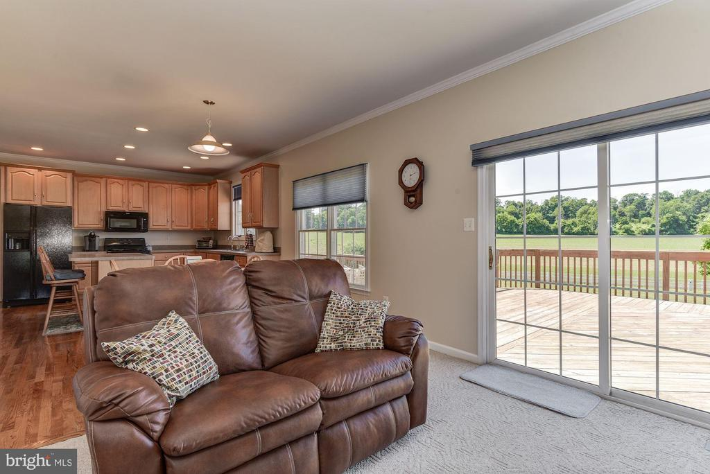Family Room - 2256 WILCOM CT, IJAMSVILLE