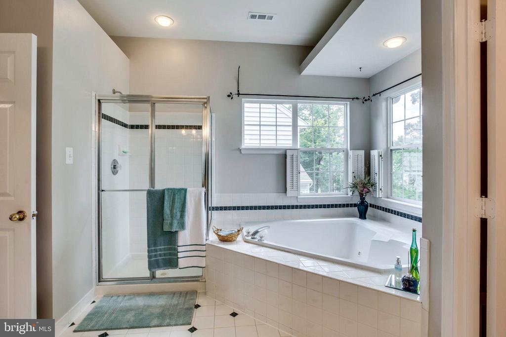Relaxing spa bath - 43221 DARKWOODS ST, CHANTILLY