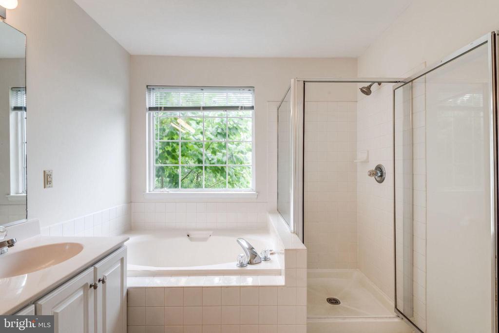 Soaking Tup & Glass Shower - 47383 DARKHOLLOW FALLS TER, STERLING