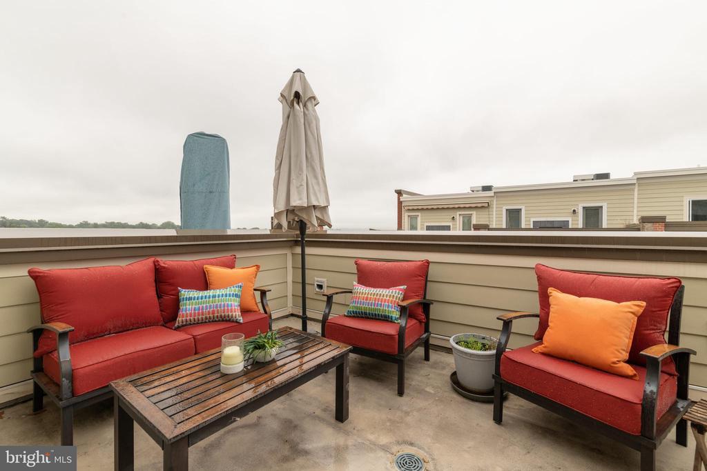 Gorgeous top floor roof deck - 3049 CHANCELLORS WAY NE, WASHINGTON