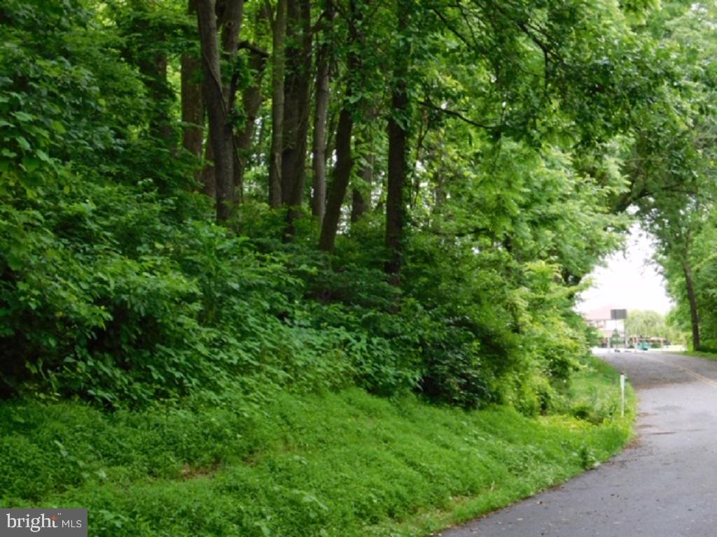 Land for Sale at Coplay, Pennsylvania 18037 United States