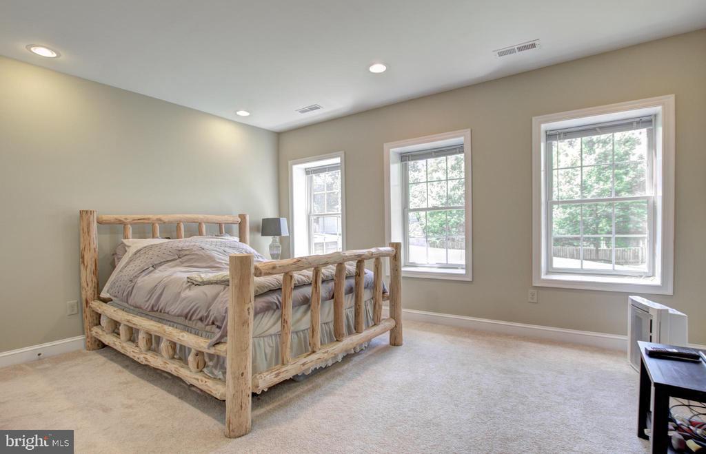 Lower Level Bedroom - 9891 CHAPEL BRIDGE ESTATES DR, FAIRFAX STATION