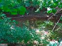 Stream behind back yard - 7724 AMHERST DR, MANASSAS