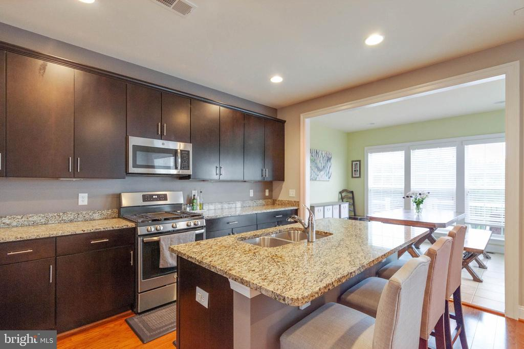 Granite Counters and Stainless Steel Appliances - 20685 ERSKINE TER, ASHBURN