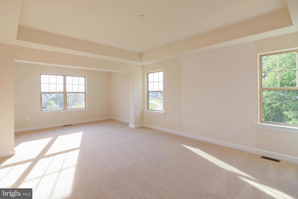 Owner's Suite with Sitting Room & Tray Ceiling - 68 EDGEWATER DR #ERP-3, FREDERICKSBURG