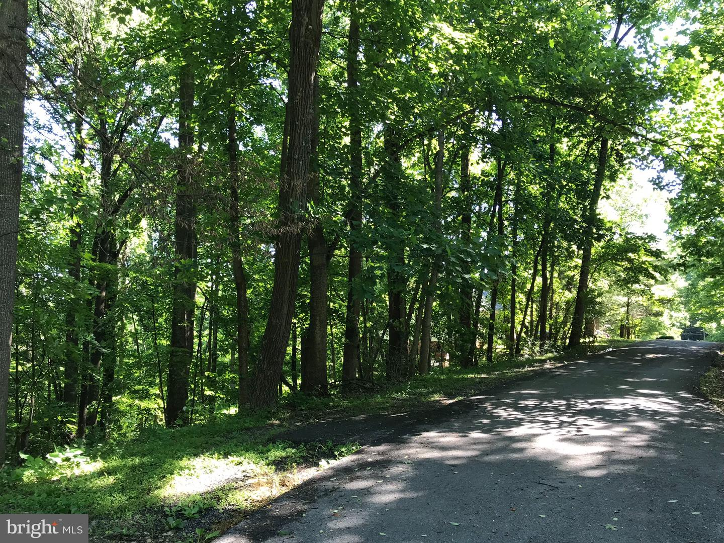 Land for Sale at Greystone Dr Front Royal, Virginia 22630 United States