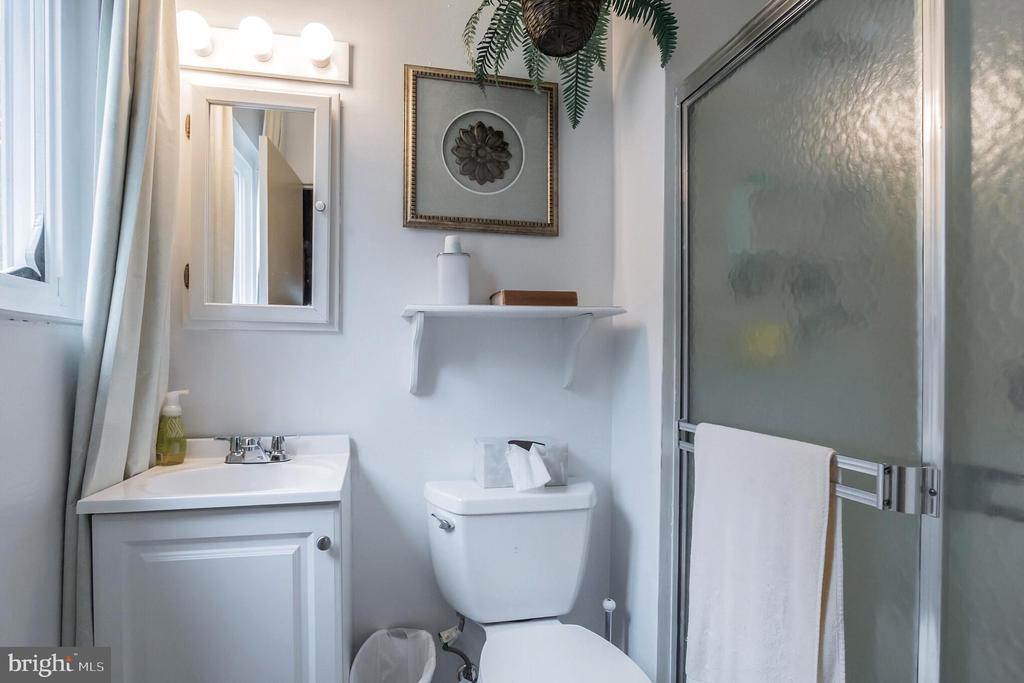 Private Master Bathroom - 713 CARTER RD, ROCKVILLE